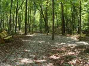 Cross Roads Trail UT Arboretum